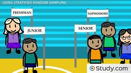 Stratified Random Samples: Definition, Characteristics & Examples