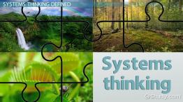 Systems Thinking in Management: Definition, Theory & Model