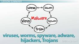 What is Malware? - Definition, Examples & Types