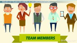 Team Members in an Organization: Roles, Responsibilities & Characteristics