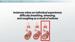 Terminology of COPD & Asthma