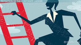 The Corporate Ladder: Definition, Structure & Positions
