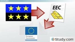 The Organization and Responsibilities of the European Commission (EC)