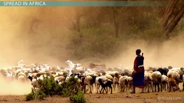 The Spread of Pastoralism and Agriculture in Africa