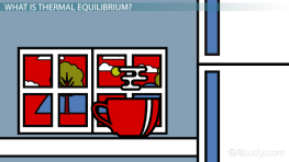 Thermal Equilibrium: Definition, Formula & Example