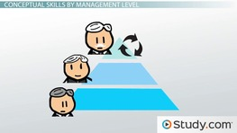 What Are Conceptual Skills in Management? - Definition & Examples