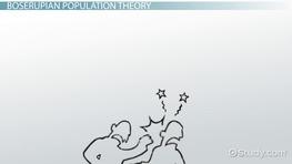 Quiz   Worksheet   Malthusian Theory of Population Growth   Study com