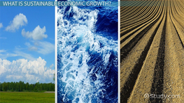 What is Sustainable Economic Growth? - Definition & Overview