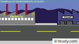 What Is Industrial Ecology? - Definition and Examples