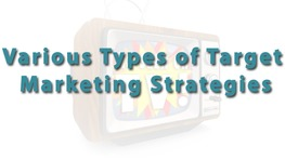 Various Types of Target Marketing Strategies