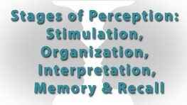 Stages of Perception: Stimulation, Organization, Interpretation, Memory & Recall