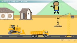 What is Urbanization? - Definition & Examples