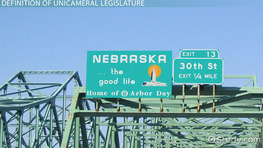 Unicameral Legislature: Definition & Overview