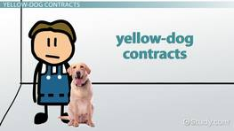 Effects of the Norris-LaGuardia Act on Yellow-Dog Contracts