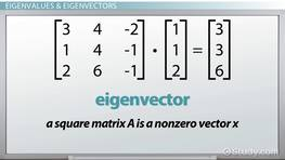 Eigenvalues & Eigenvectors: Definition, Equation & Examples