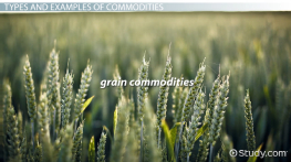 What Are Commodities? - Definition, Types & Examples