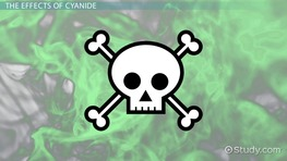 What is Cyanide? - Definition, Formula & Effects