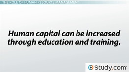 What Is Human Capital? - Importance to An Organization