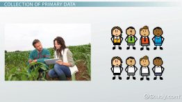 What Is Primary Data in Marketing Research? - Definition, Sources & Collection