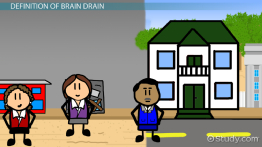 What is Brain Drain in Economics? - Definition, Causes, Effects & Examples