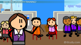 What Is Diversity Training in the Workplace? - Definition & Importance