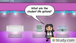Which Student Life Options Should I Consider?