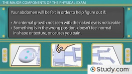 Your Physical Exam: Purpose & Major Components