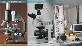 Types of Microscopes: Electron, Light & Fluorescence