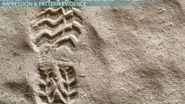 Impression & Pattern Evidence: Definition & Process