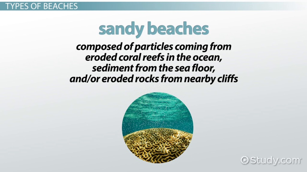 What Is A Beach Definition Formation Characteristics Video