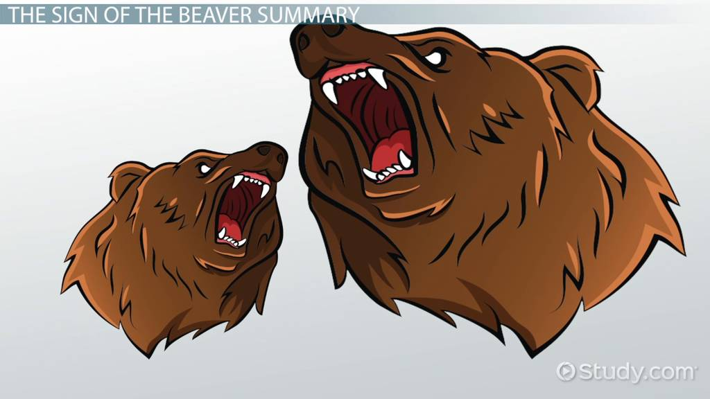 The Sign of the Beaver: Summary & Author - Video & Lesson Transcript ...