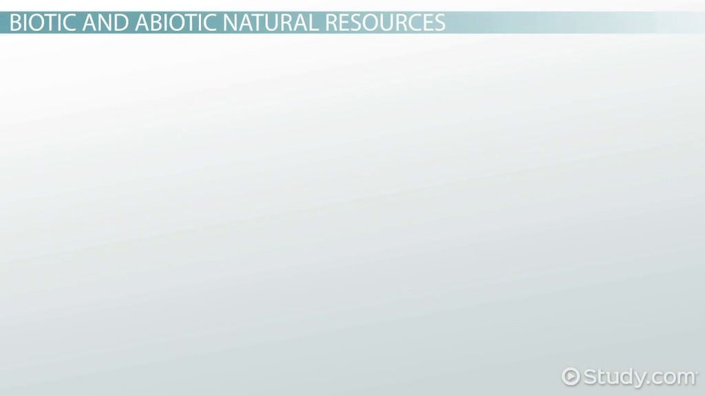 What Are Natural Resources Definition Types Video Lesson
