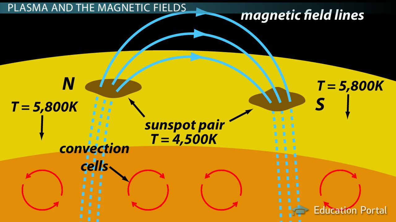 Image result for babcock model sunspot