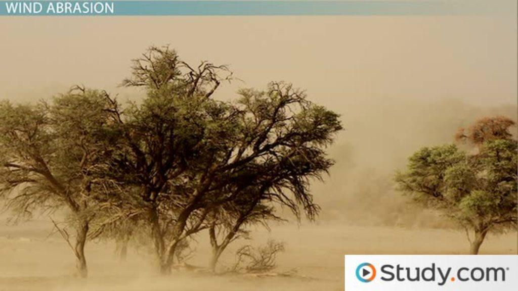 Wind Action & Effects on the Desert Landscape - Video & Lesson Transcript | Study.com