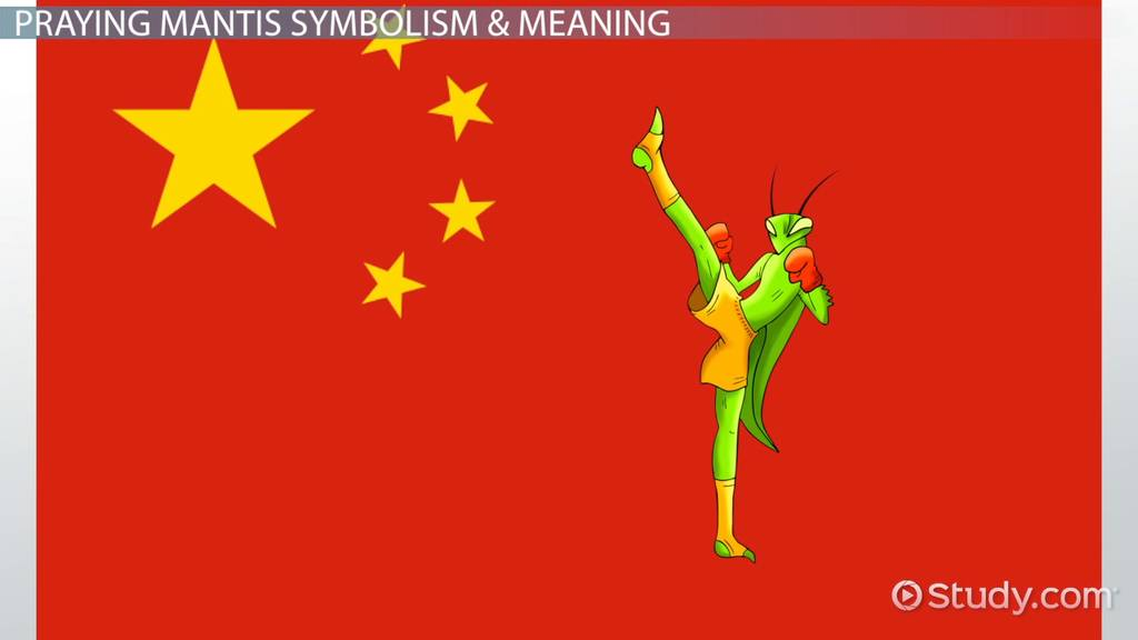 Praying Mantis Symbolism Meaning Video Lesson Transcript