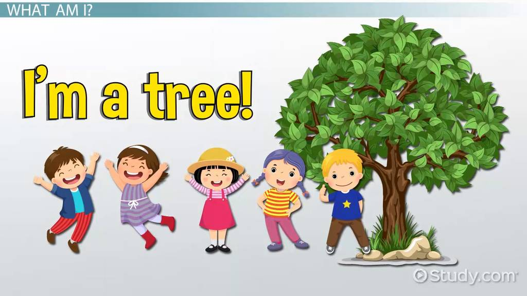 Parts Of A Tree Lesson For Kids  Functions  U0026 Diagram