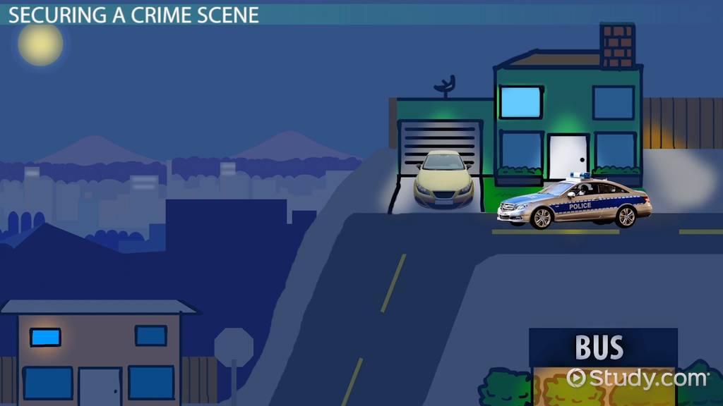 crime scene  definition  u0026 components