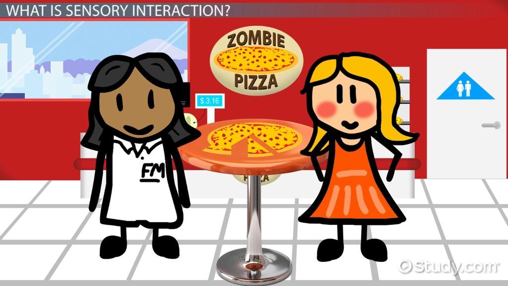 sensory interaction  definition  u0026 examples