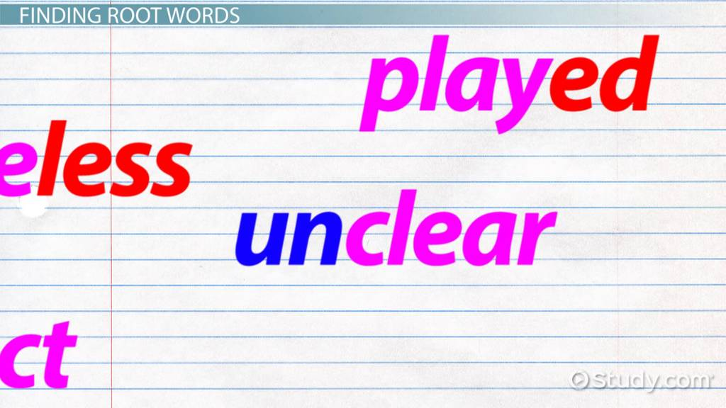 Root Words Lesson For Kids Video Lesson Transcript