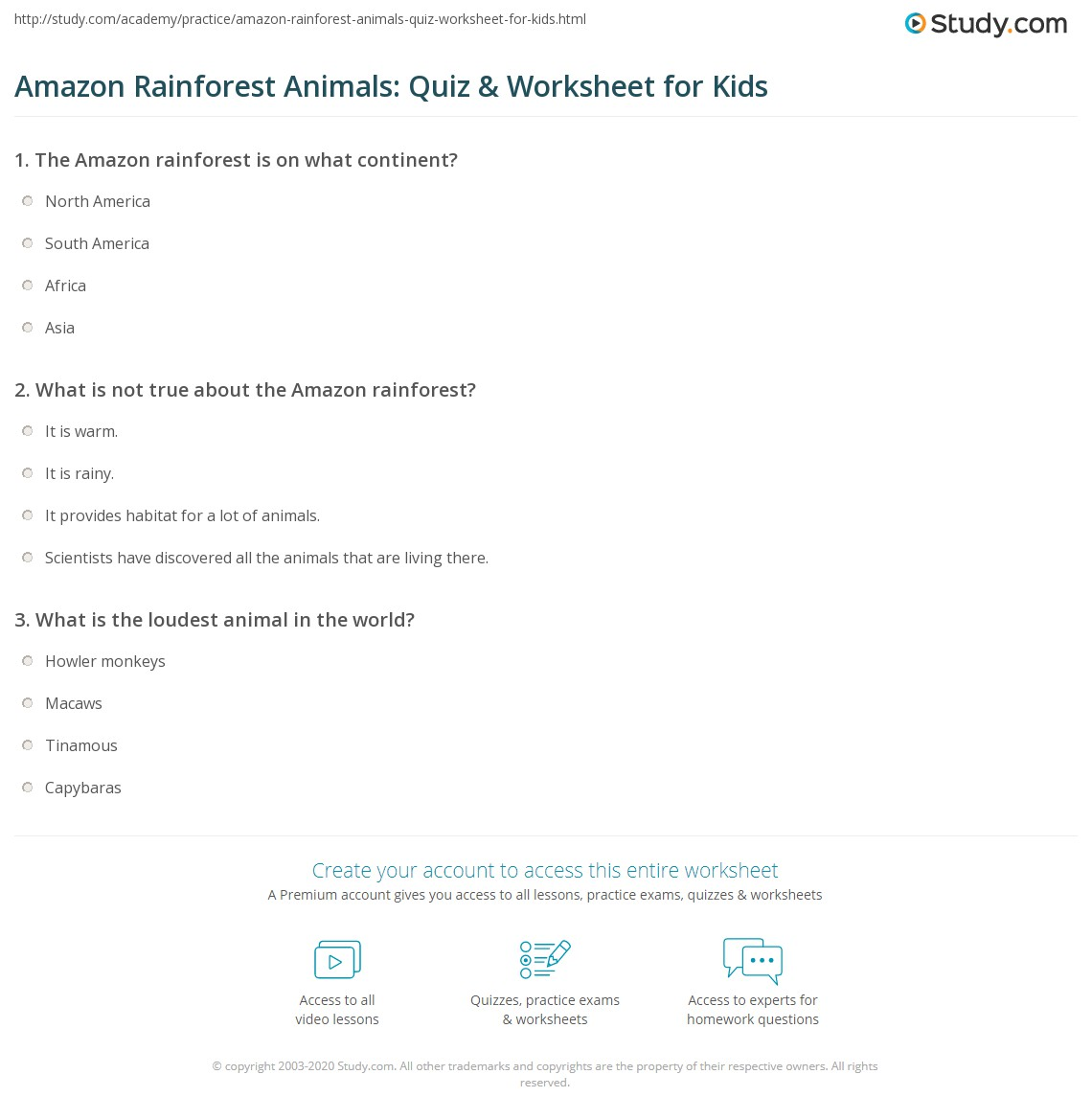 Amazon Rainforest Worksheets - Tecnologialinstante