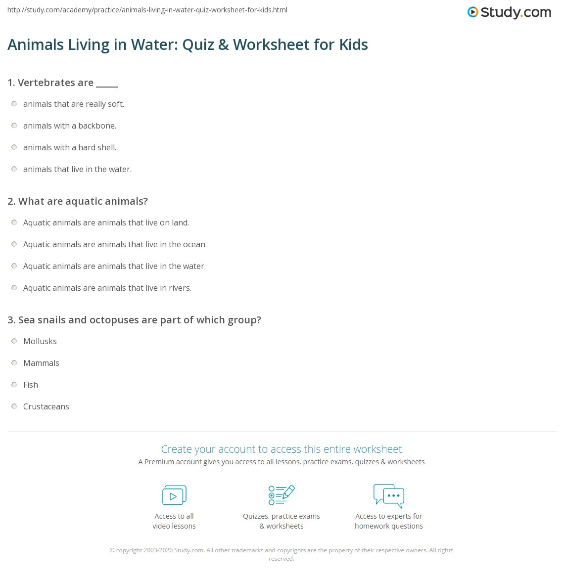 Animals Living in Water: Quiz & Worksheet for Kids  Study.com multiplication, grade worksheets, worksheets for teachers, free worksheets, learning, and math worksheets Vertebrates And Invertebrates Worksheets For Kids 2 1382 x 1140