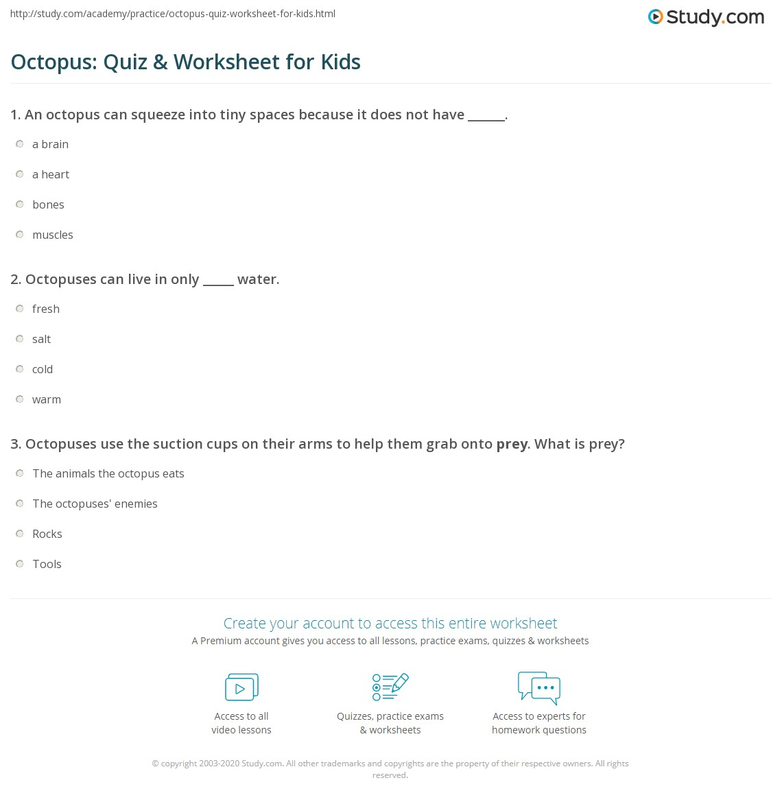 Octopus Quiz Worksheet for Kids – Photosynthesis Worksheets Kids