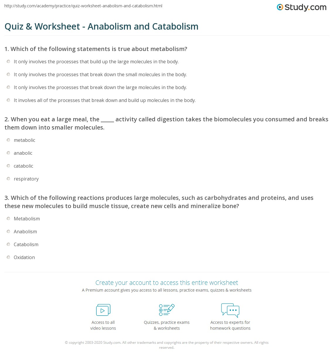 quiz worksheet anabolism and catabolism 1 140—1 317 pixels
