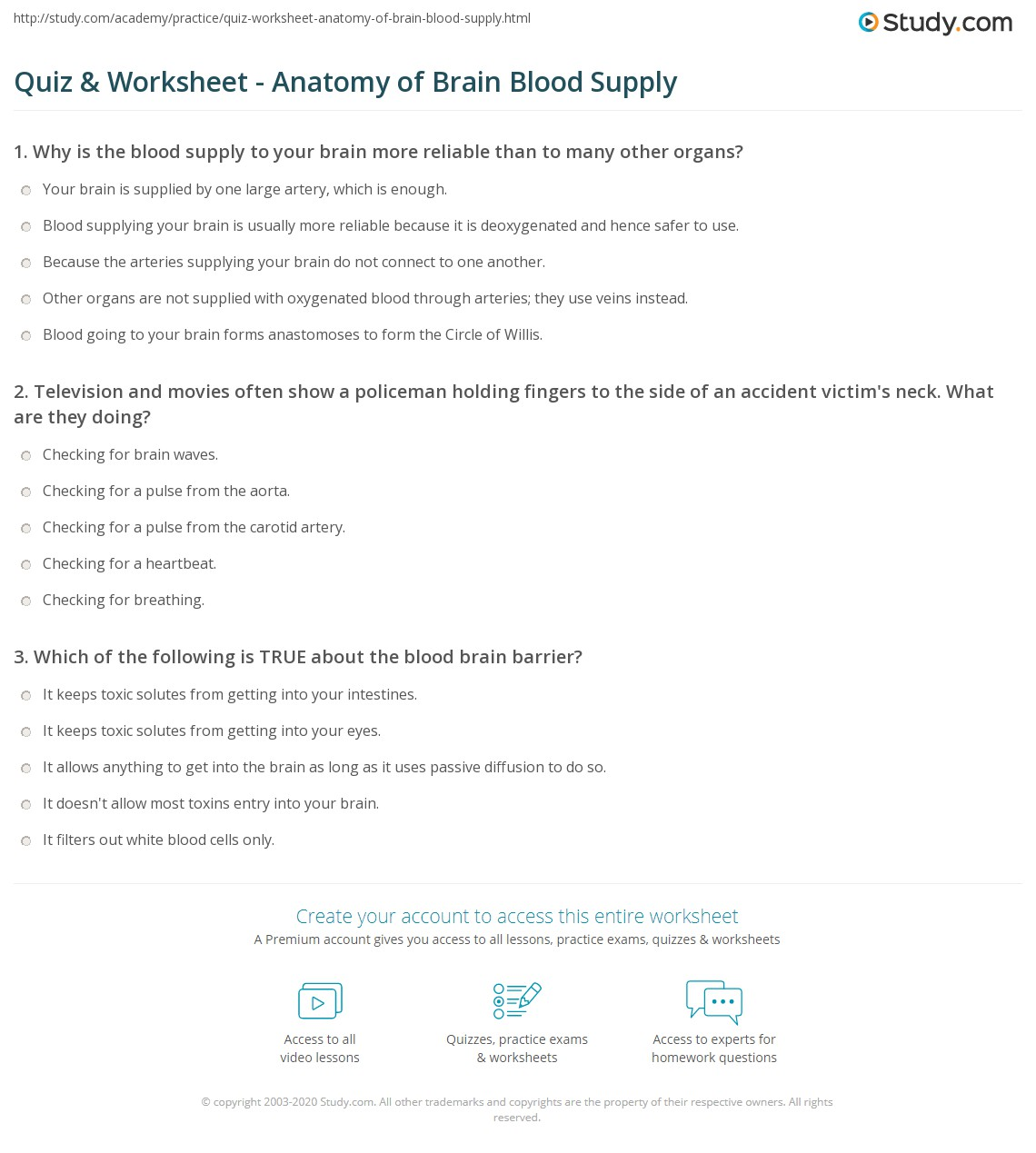 Quiz Worksheet Anatomy of Brain Blood Supply – Brain Anatomy Worksheet
