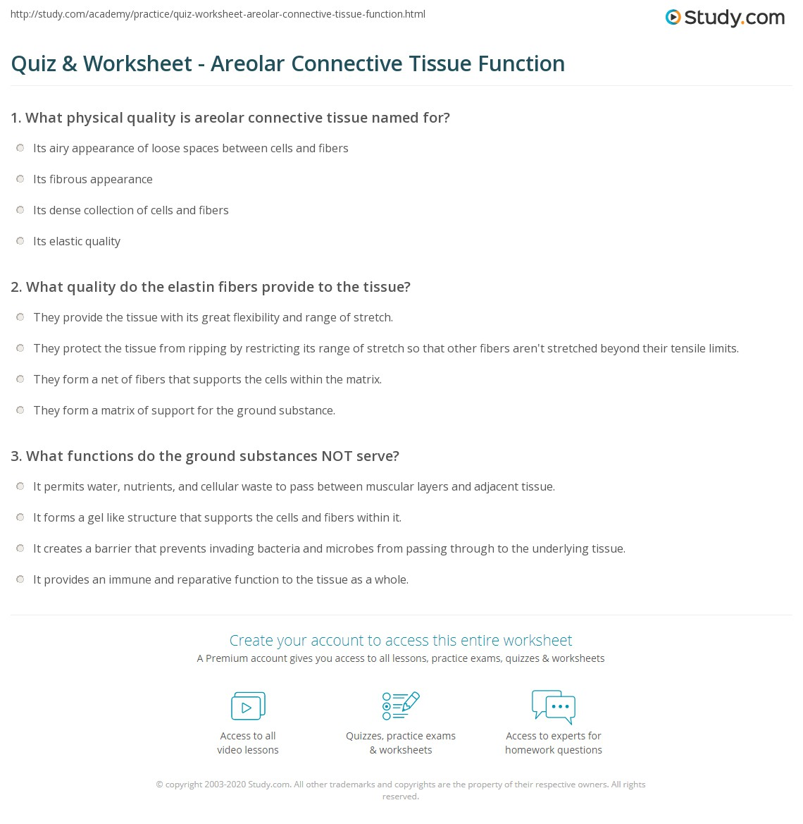 Connective Tissue Worksheet carolinabeachsurfreport – Connective Tissue Worksheet