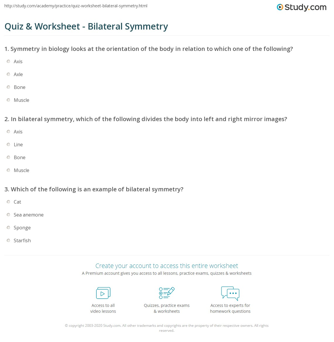 Quiz Worksheet Bilateral Symmetry – Axis of Symmetry Worksheet