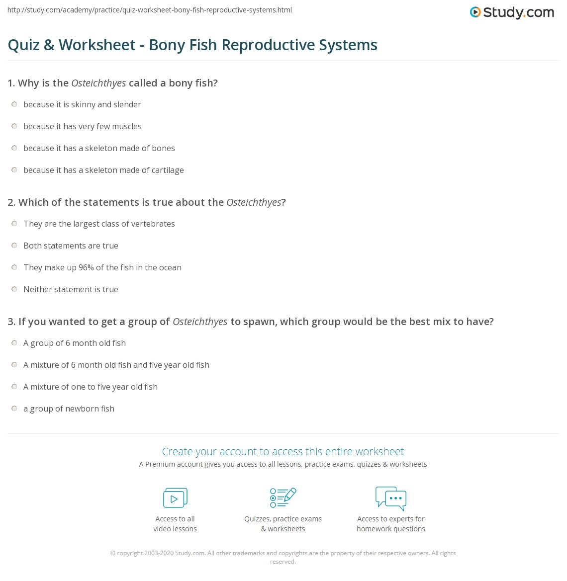 Quiz Worksheet Bony Fish Reproductive Systems – Reproductive System Worksheet
