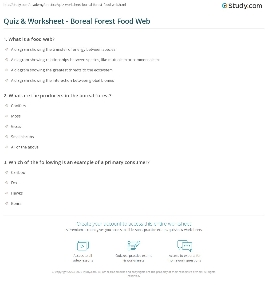 Uncategorized Food Chains And Food Webs Worksheet quiz worksheet boreal forest food web study com print the worksheet