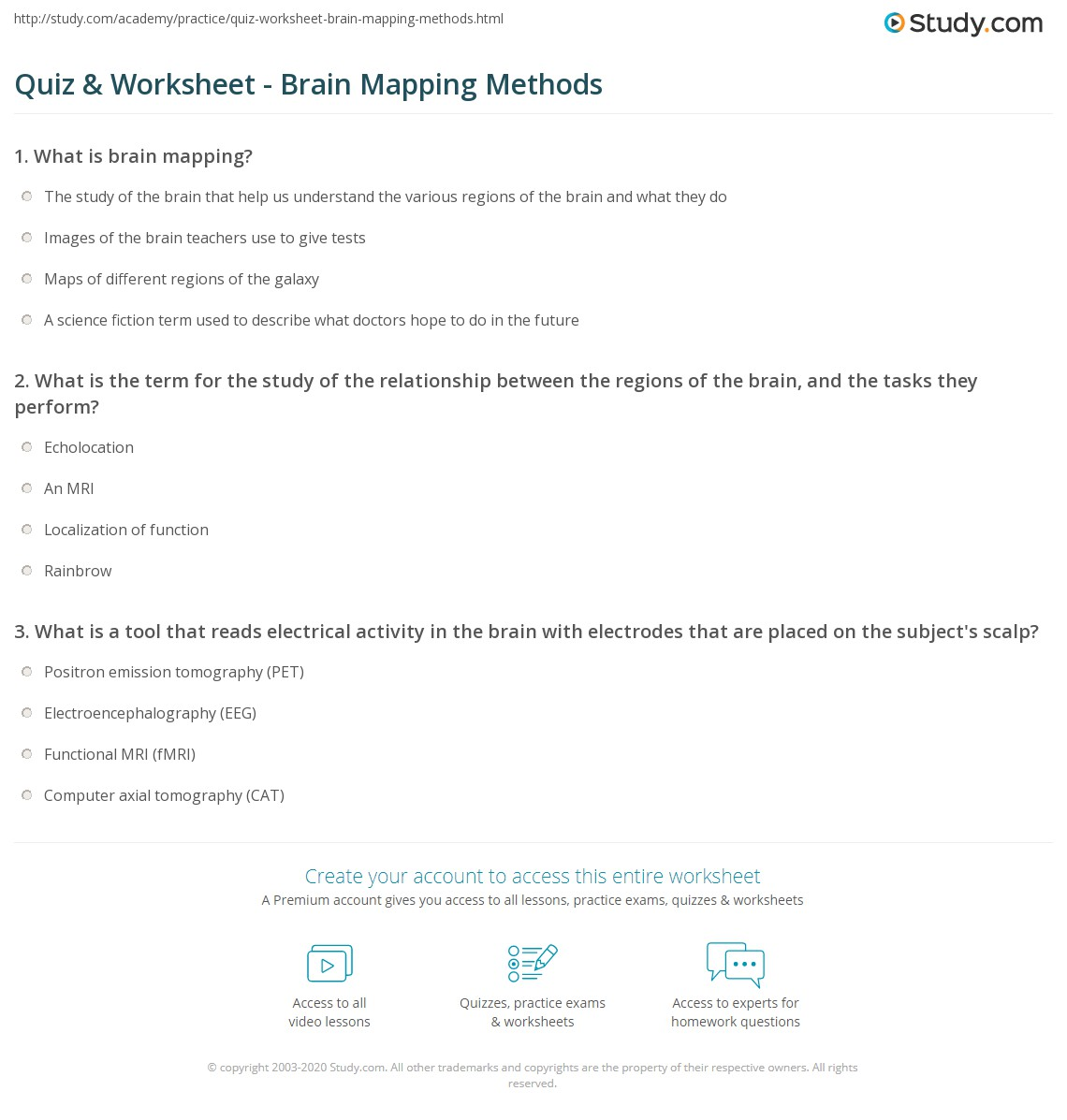 Parts Of The Brain Worksheet Cxpzinfo – Parts of the Brain Worksheet