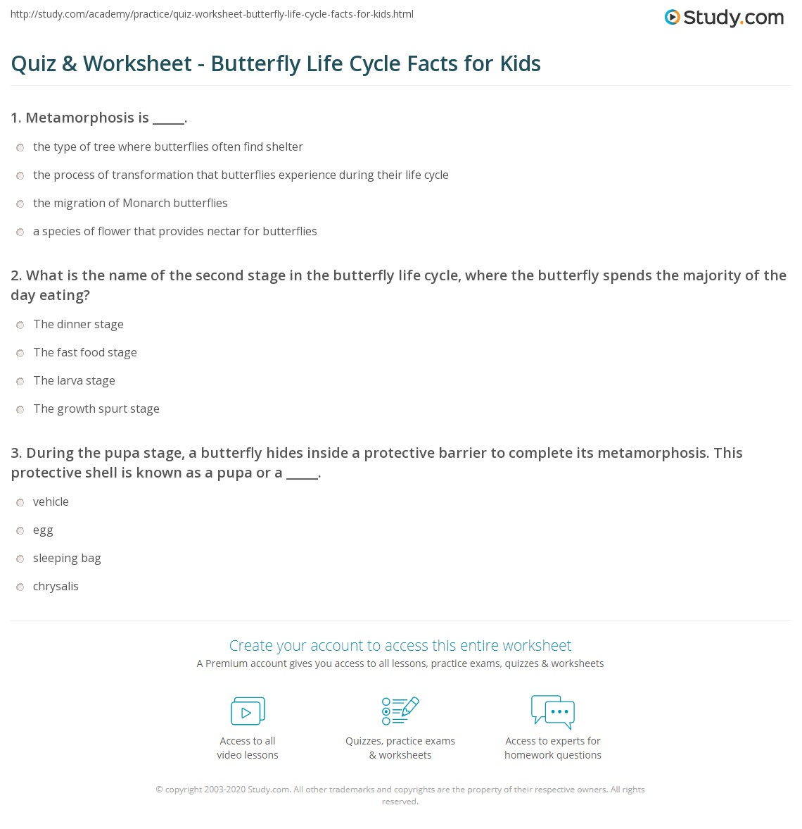 Quiz Worksheet Butterfly Life Cycle Facts for Kids – Butterfly Cycle Worksheet